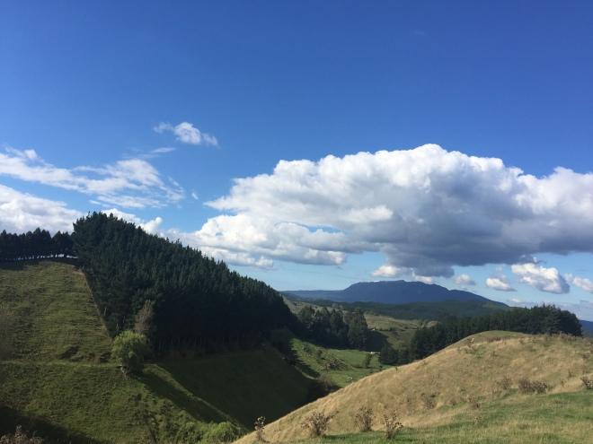 South of Rotorua on Highway 5